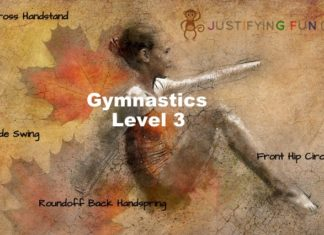 level 3 gymnastics requirements